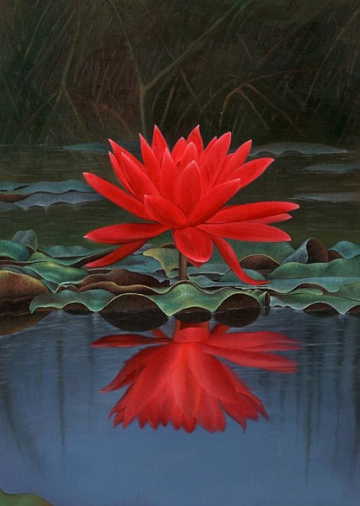Red Lotus Flower Meaning Flowers Names With Pic...