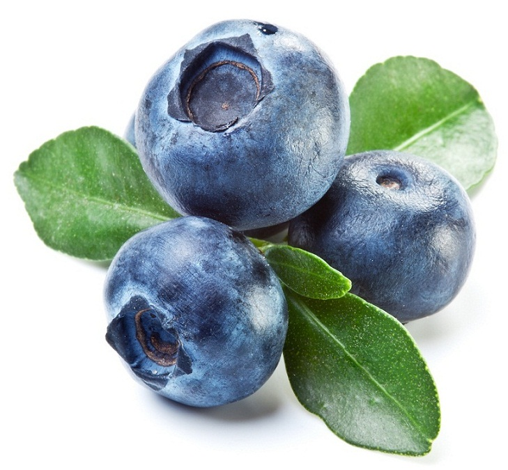 Blueberry in Hindi