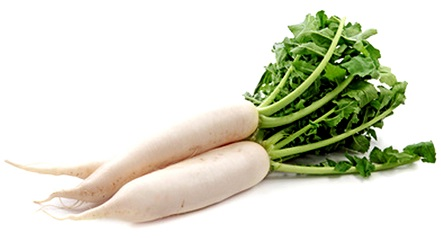 Vegetables Name With Pictures - Vegetable Images