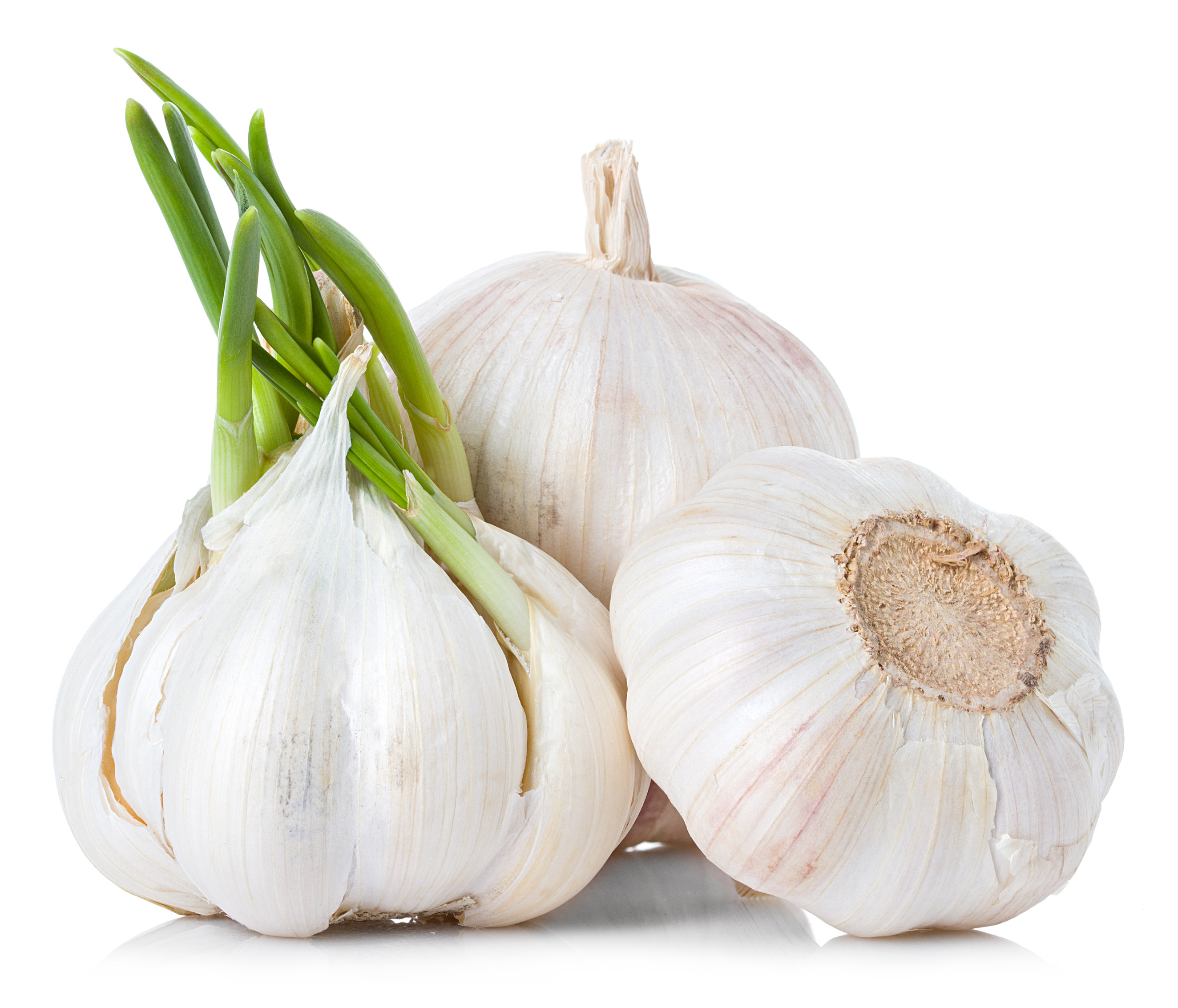 Garlic – लहसुन  IMAGES, GIF, ANIMATED GIF, WALLPAPER, STICKER FOR WHATSAPP & FACEBOOK