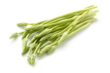 Wild Asparagus – शतावरी, सतावर, सतमूली